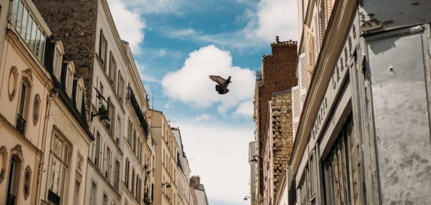 immeubles dans une ville de France